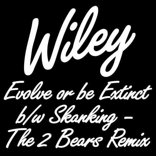 Evolve or be Extinct b/w Skanking - The 2 Bears Remix - Wiley