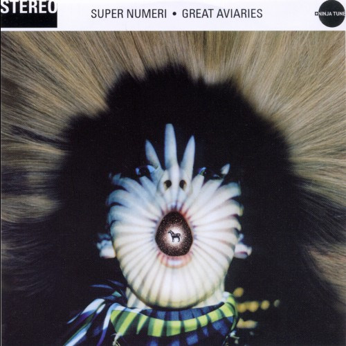 Great Aviaries - Super Numeri